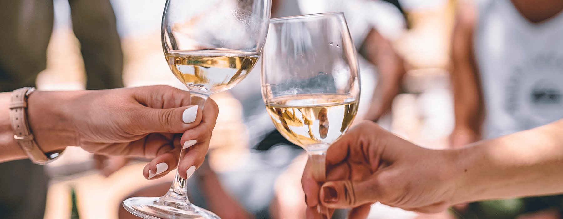 lifestyle image of a group toasting by pushing their wine glasses together